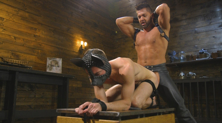 bound-gods-the-pup-master